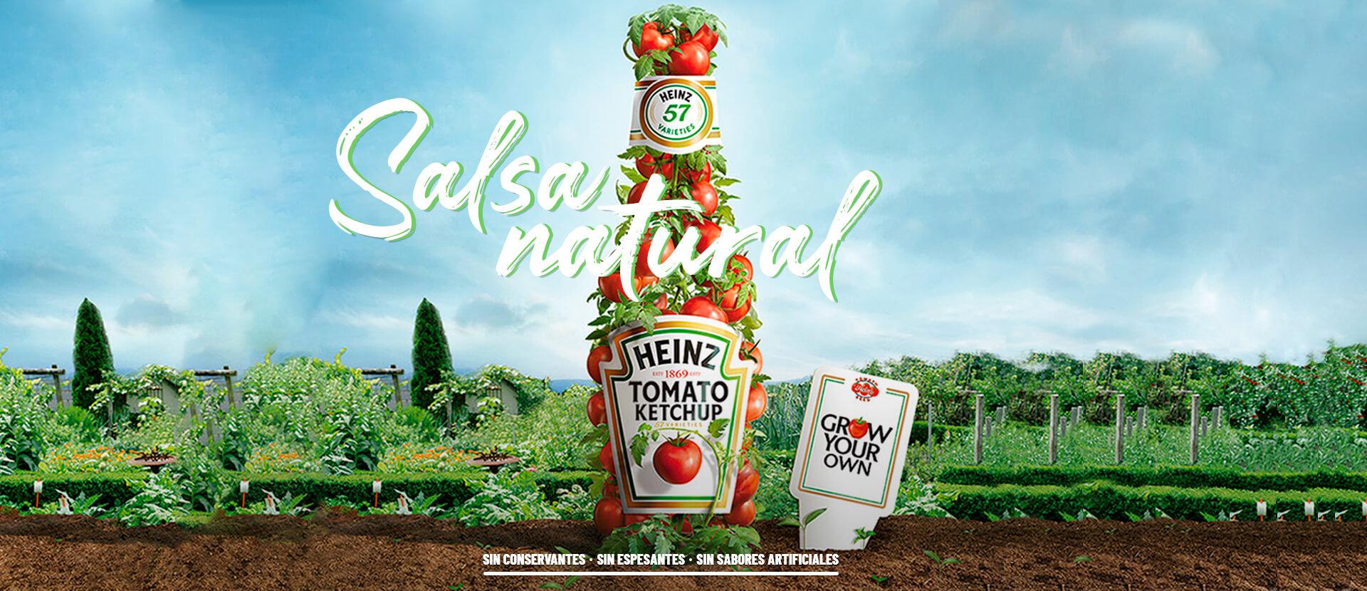 Banner Salsa de Tomate Heinz